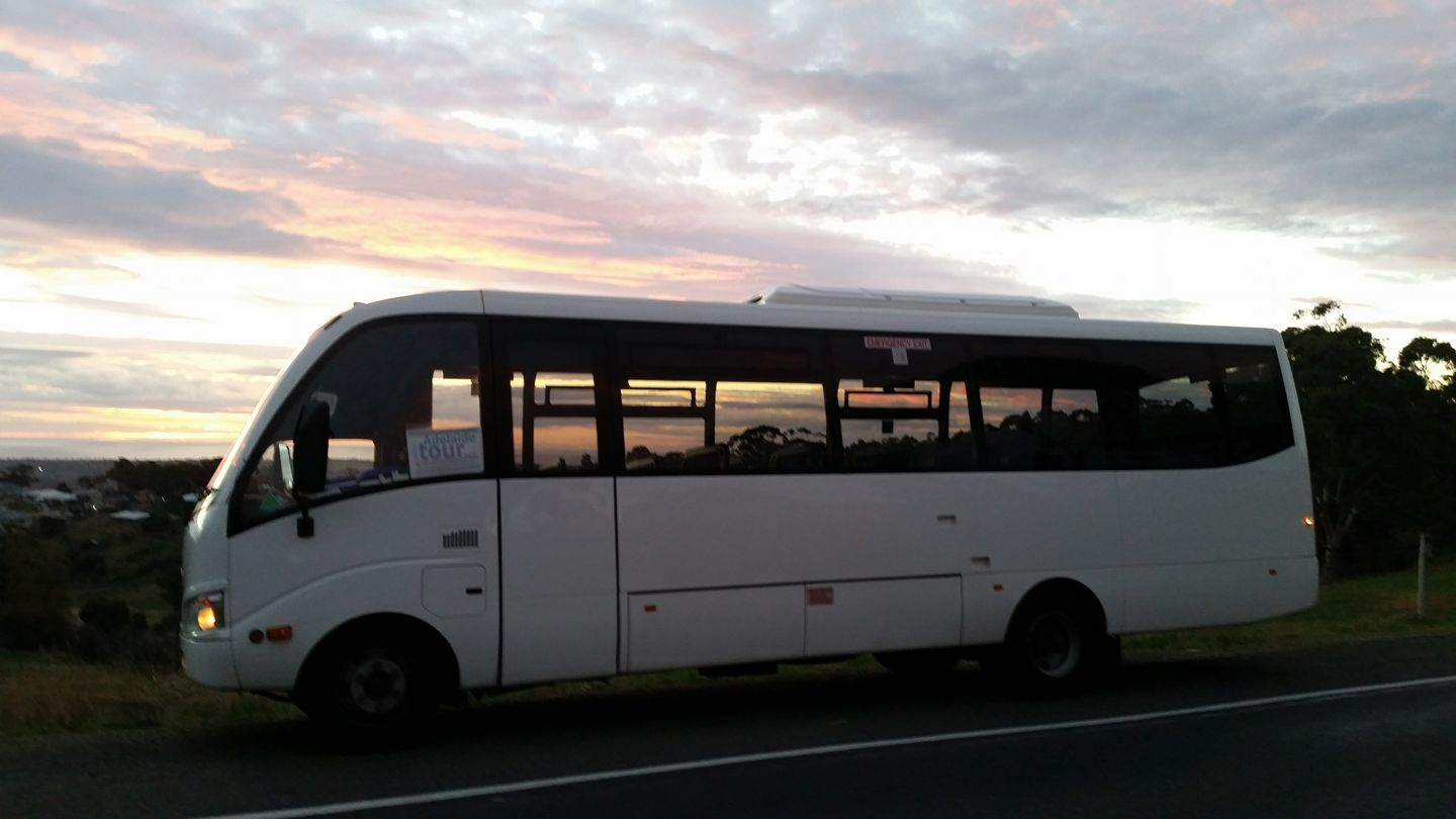 Licensed bus adelaide